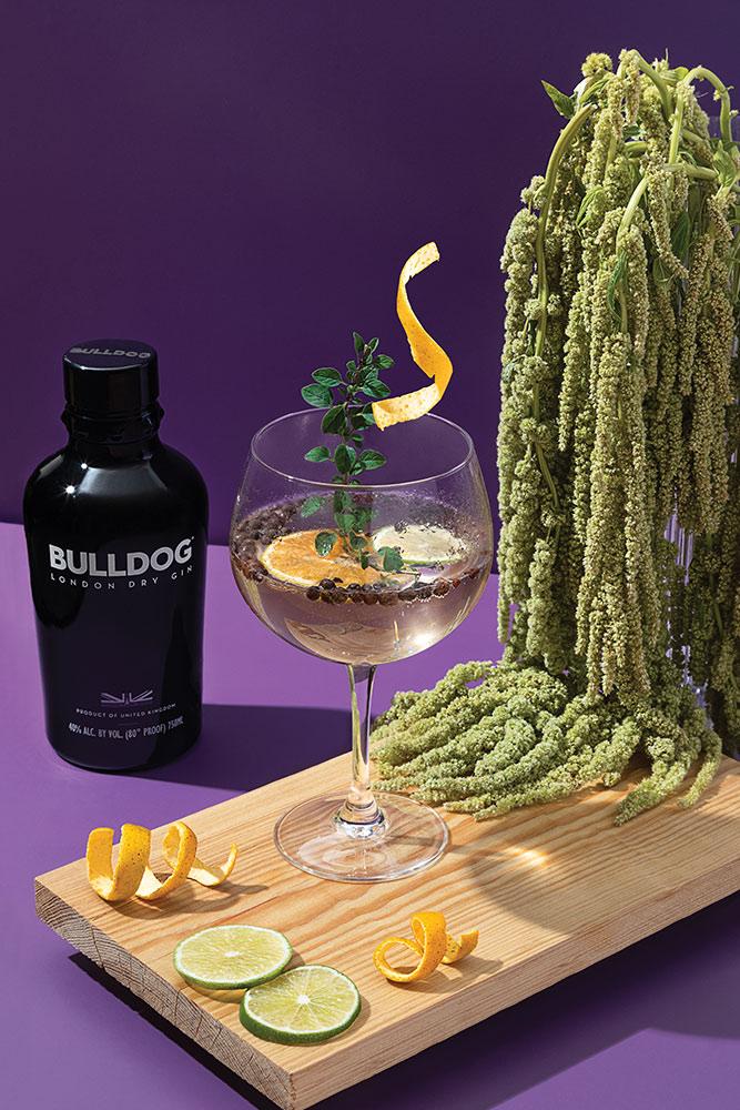 Coctel Orégano Gin